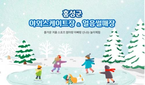 홍성군 스케이트장